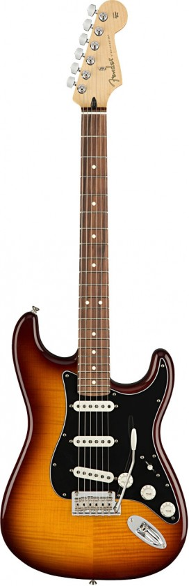 Fender Stratocaster® Plus Top Player